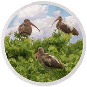 Three's A Crowd Round Beach Towel
