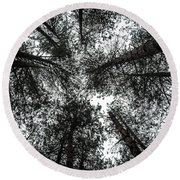 Through The Canopy Round Beach Towel