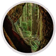 Through The Knothole Round Beach Towel