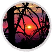 Through The Pines Round Beach Towel