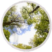 Through The Tree Tops Round Beach Towel
