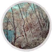 Through The Trees In Infrared Round Beach Towel