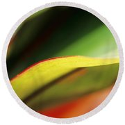 Ti-leaf Abstract Round Beach Towel