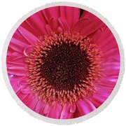 Tickled Pink Round Beach Towel