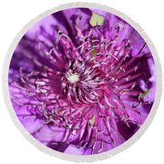 Tickled Purple Round Beach Towel