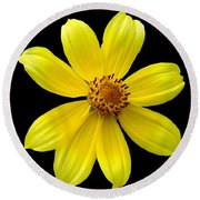 Tickseed Sunflower Round Beach Towel