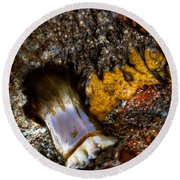 Tidal Abstract Round Beach Towel