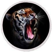 Tiger 10 Round Beach Towel