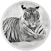 Tiger Cub At Rest Round Beach Towel