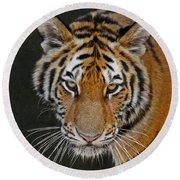 Tiger Hunting Round Beach Towel
