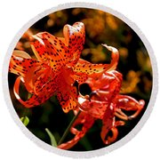 Tiger Lilies Round Beach Towel by Rona Black