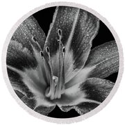 Tiger Lily - Black And White Round Beach Towel