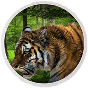 Tiger On The Prowl Round Beach Towel