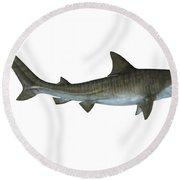 Tiger Shark Side View Round Beach Towel