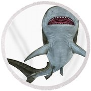 Tiger Shark Underside Round Beach Towel