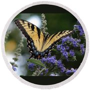 Tiger Swallowtail 3 Round Beach Towel