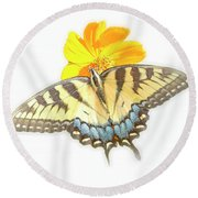 Tiger Swallowtail Butterfly, Cosmos Flower Round Beach Towel