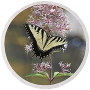 Tiger Swallowtail Butterfly On Common Milkweed 2 Round Beach Towel