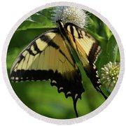 Tiger Swallowtail On Button Bush Round Beach Towel