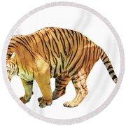 Tiger White Background Round Beach Towel