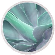 Tinted Agave Attenuata Abstract Round Beach Towel