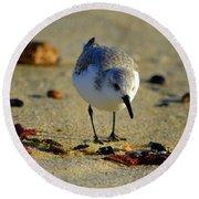 Tiny Matters Round Beach Towel