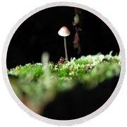 Tiny Mushroom 1 Round Beach Towel