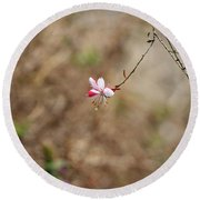 Tiny Red And White Wildflowers Round Beach Towel
