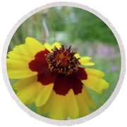 Tiny Yellow Flower Round Beach Towel