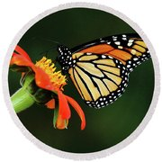 Tithonia Loving Monarch Round Beach Towel