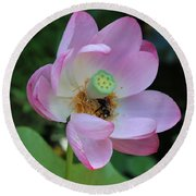 To Bee A Flower Round Beach Towel