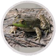 Toad 1 Round Beach Towel