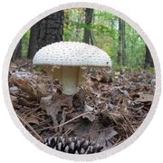 Toad Stool V Round Beach Towel