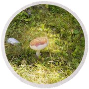 Toadstool Grows On A Forest Floor. Round Beach Towel