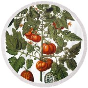 Tomato & Watermelon 1613 Round Beach Towel