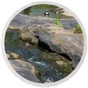Top Of Noccalula Falls Round Beach Towel