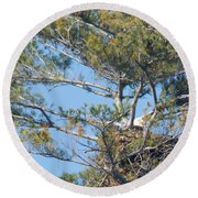 Top Of The Pine Round Beach Towel