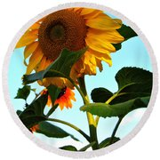 Towering Sunflower Round Beach Towel
