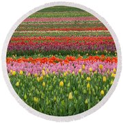 Tractor Among The Tulips Round Beach Towel