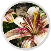Traditional Art Lily Flowers Floral Garden Baslee Troutman Round Beach Towel