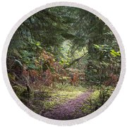 Trail In The Forest Round Beach Towel