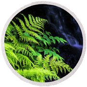 Trailside Plants Round Beach Towel