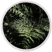Tranquil Botanical Ferns Round Beach Towel