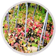 Tranquil Days Of Autumn Round Beach Towel