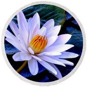 Tranquil Lily Round Beach Towel
