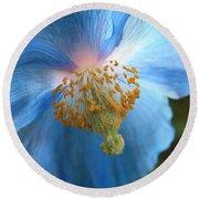 Translucent Blue Poppy Round Beach Towel by Carol Groenen