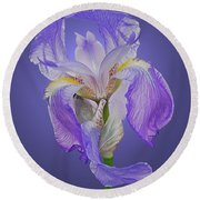 Translucent Iris Round Beach Towel