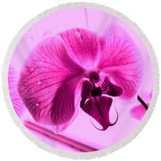 Translucent Purple Petals Round Beach Towel