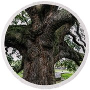 Treaty Oak 12 14 2015 024 Round Beach Towel