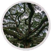 Treaty Oak 12-15-2015 051 Round Beach Towel